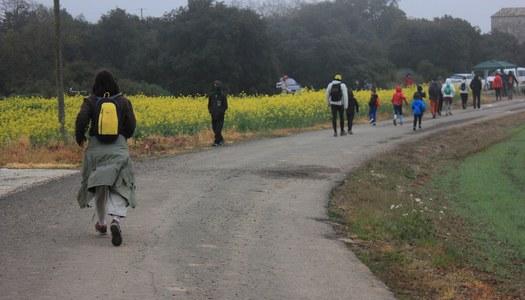 """L'Ajuntament proposa una versió virtual de la """"Caminada de la Marinada"""""""